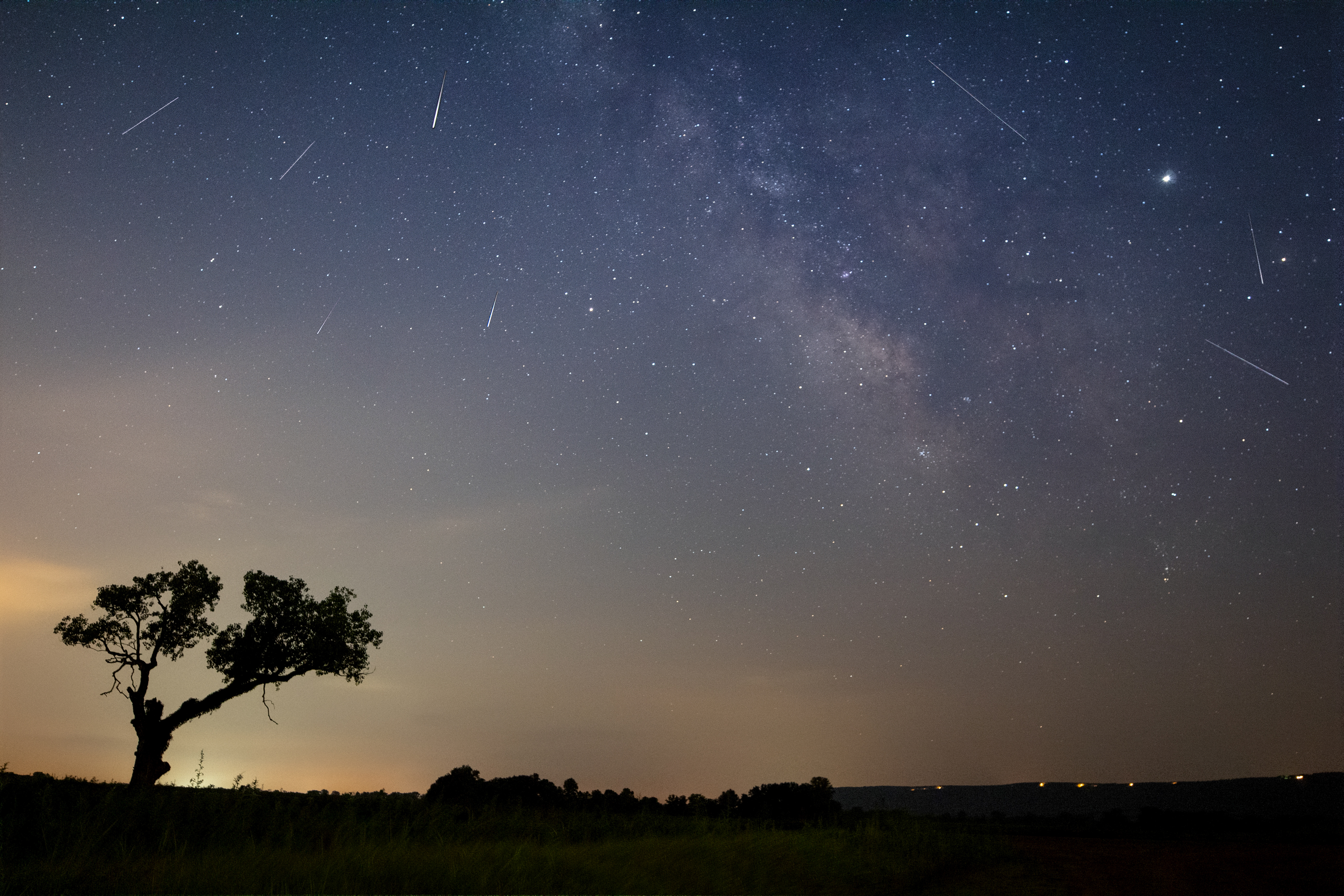 Millky Way with Perseids over tree silhouette
