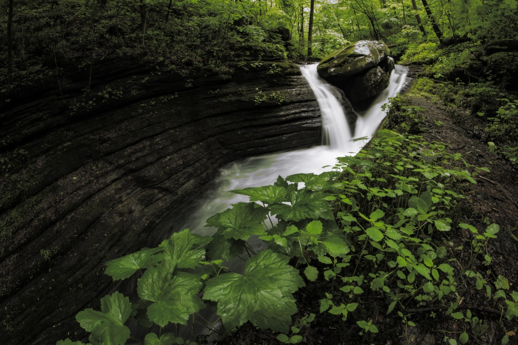V-Slot Falls in spring covered in lush foliage