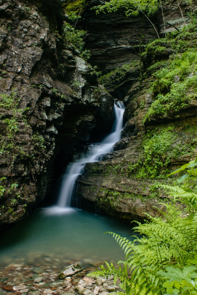 Turquoise pool and waterfall surrounded by ferns