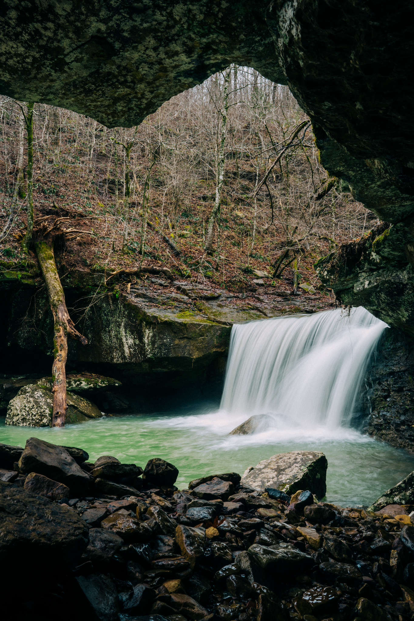 Hamilton Falls in the Richland Creek Wilderness