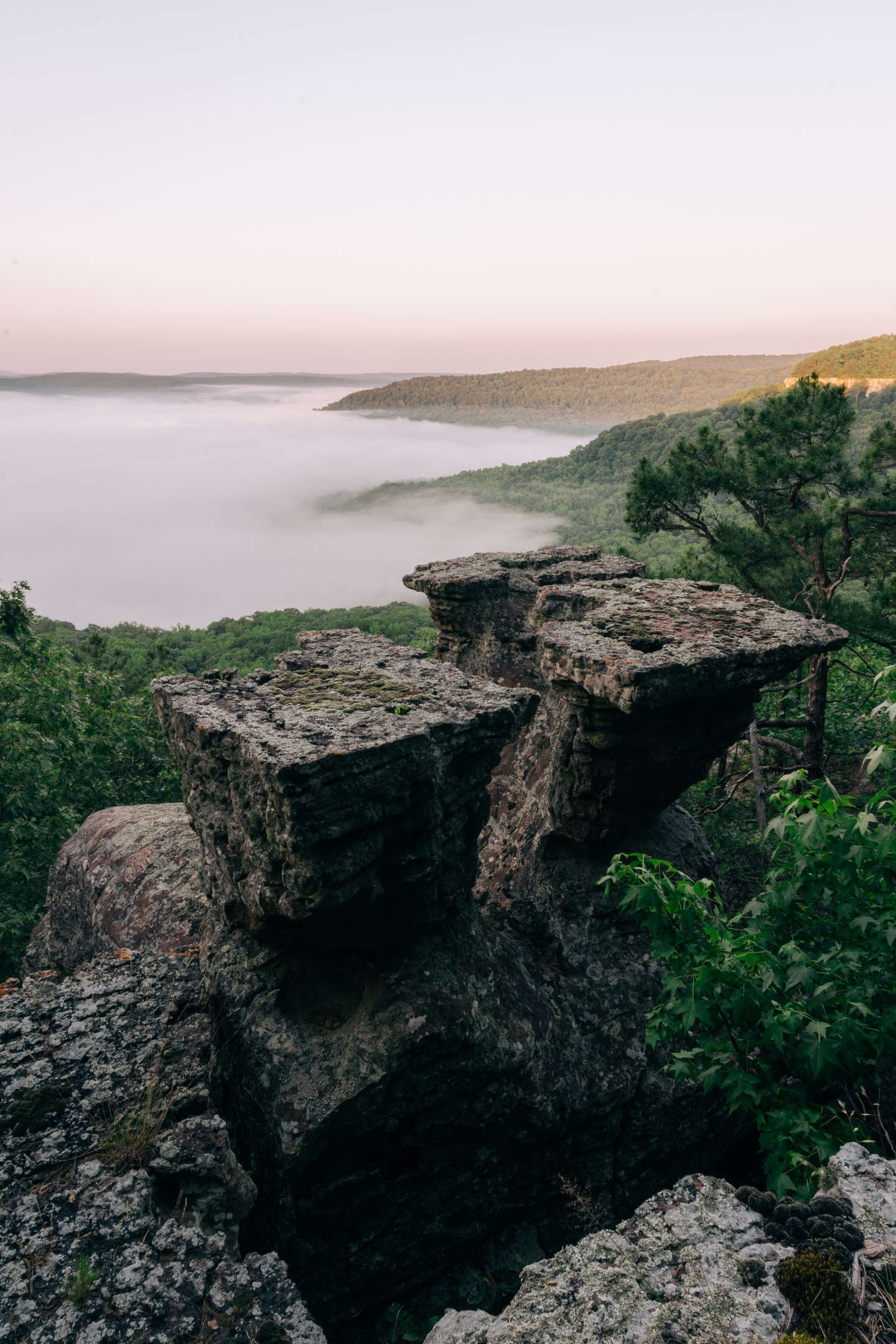 Tea Table Rocks and thick fog at sunrise in the Ozark Mountains of Arkansas